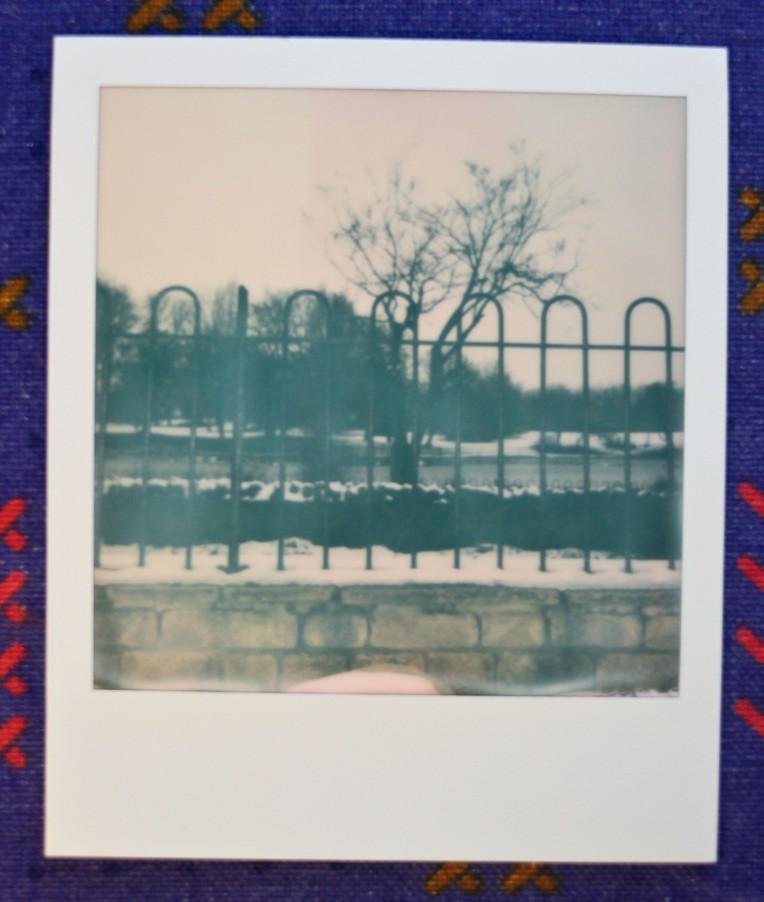 snow albery park-1