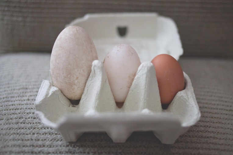 3 eggs-1